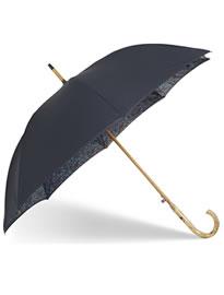 зонт4