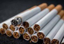 Табачные изделия: что подобрать себе или в подарок?